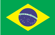 杭州代办巴西商务签证/办巴西商务签证所需要的材料