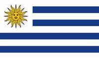 乌拉圭单次入境商务签证(如何去乌拉圭,签证费用)
